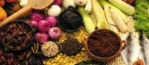 alimentacion tradicional