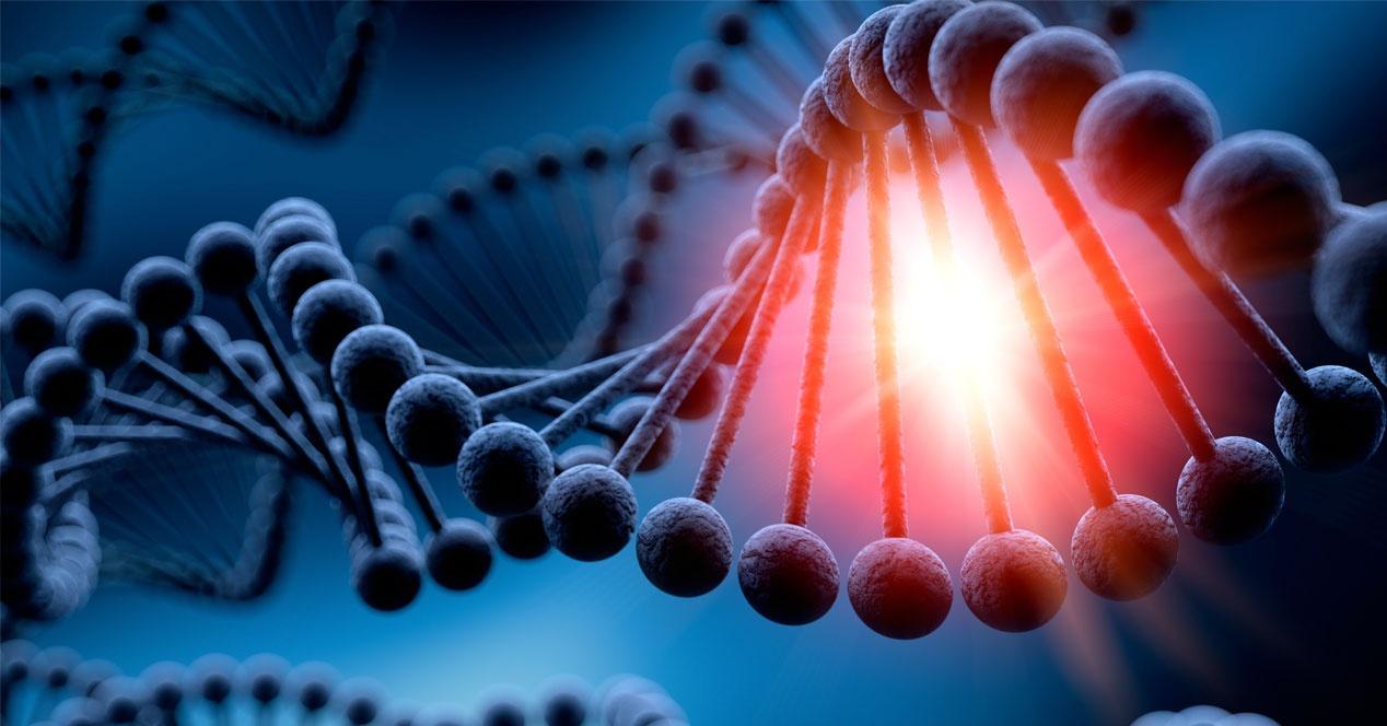 ADN acido desoxirribunocleico