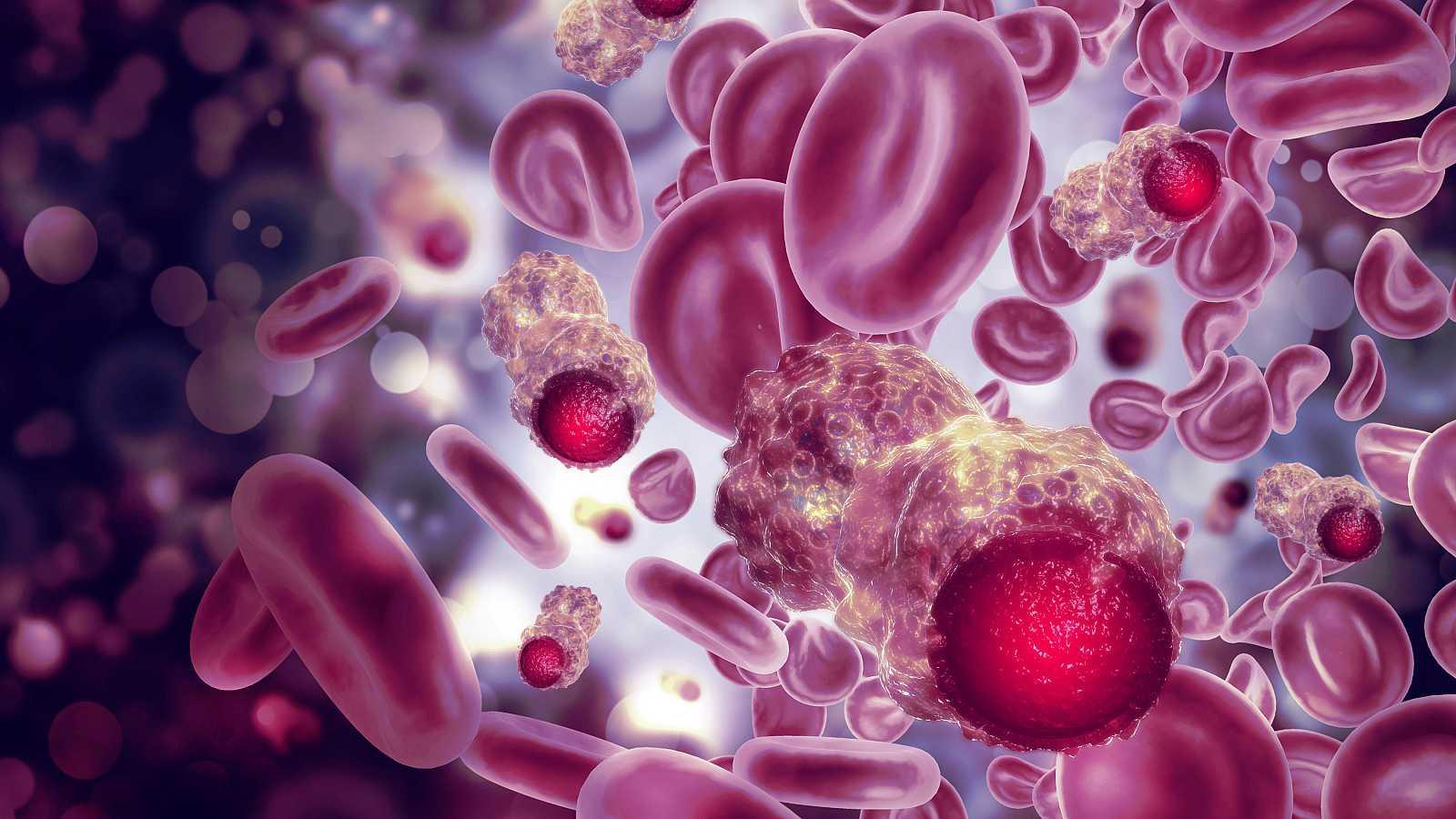 células normales y cancerosas
